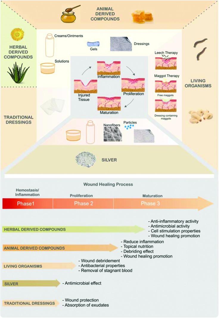 beneficios del própolis en la curación de heridas menores