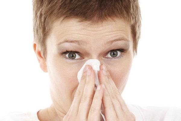 Cómo Mejorar tu Sinusitis con Propóleo