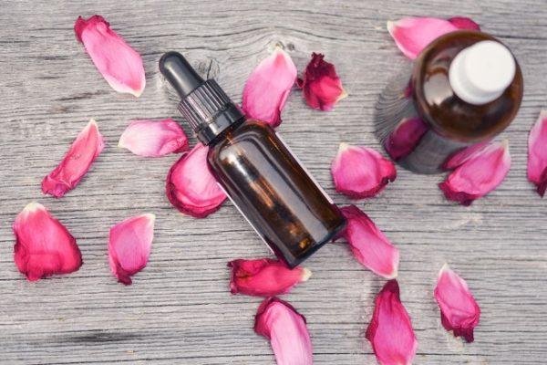 Beneficios de la rosa de mosqueta y su aceite en cosmética