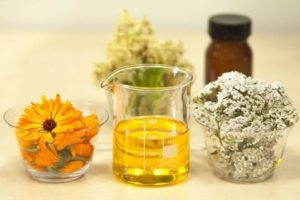 Beneficios y propiedades de la jojoba